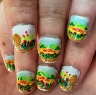 Poppies fields nails