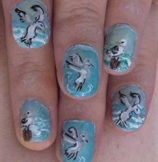 Seagulls nails